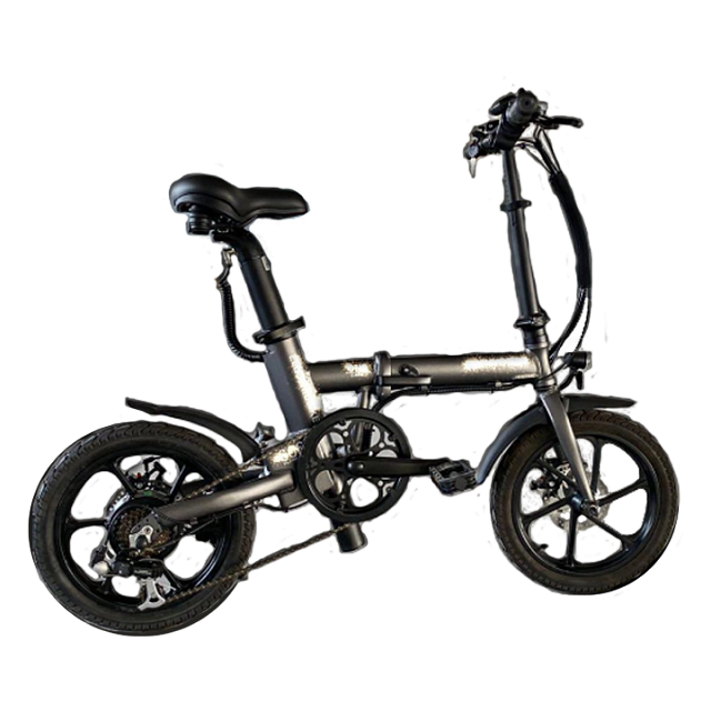 YY Scooter Rogi Electric Bicycle